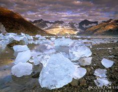 Johns Hopkins Inlet in Glacier Bay NP, Alaska