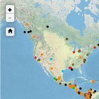 La carte des conflits environnementaux dans le monde
