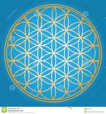 Die 42 Besten Bilder Von Blume Des Lebens Flower Of Life Sacred
