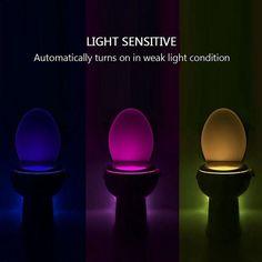 Glow Toilet Bowl Light