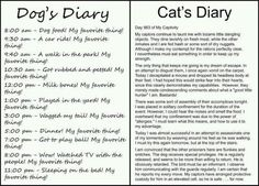 The difference between a dog's diary and a cat's diary.
