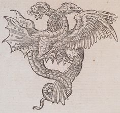 Mediumwoodblock  BookClaude Paradin, chanoine de Beaujeu. Devises Heroïques. Lyon : Ian de Tournes et Guil Gazeau, 1557. Page 202.  Notes  ThemeBestiary
