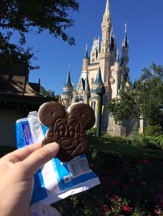 A Disney World vacation can be SUPER exhausting!  Here are some great suggestions to help make it less so.