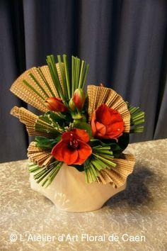 Amarryllis, carton et palmier