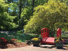 Wilmington Arboretum Spring 2018