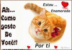 Google+ Cats, Google, Animals, Love Messages, Information Technology, Gatos, Animales, Animaux, Animal