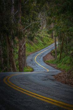 . #isadoreapparel #roadisthewayoflife #cyclingmemories