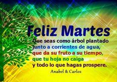 Feliz Martes de Prosperidad y Éxitos!!! #anabelycarlos #caminodelexito
