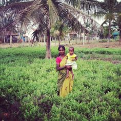 This is Shashikala. She is part of the Phalada Tulsi Farmer group in India that grows Fair Trade Certified tea for Honest Tea. When you buy Honest Tea, you're helping improve the lives of her family and community.