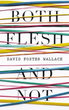David Foster Wallace - Famous Cruise Essay