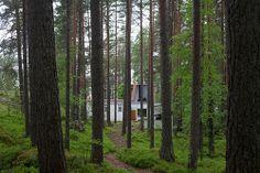 muuratsalo - experimental house - Aalto