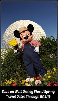 Walt Disney World Spring discount 2015  Save up to 30%!  #DisneyDiscount #DisneyResort
