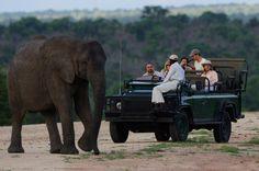 Blog OMG I'm Engaged - África do Sul como destino de viagem de Lua de Mel. Honeymoon at South Africa.