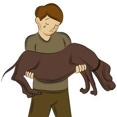 die besten 25 hund starb ideen auf pinterest mittel gegen hundefl he hunde floh behandlung. Black Bedroom Furniture Sets. Home Design Ideas