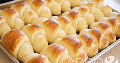 Delicious And Easy Dinner Rolls - I'm always in charge of the bread for the family, I made these for Easter and they said they were the best yet :] Bread Recipes, Cooking Recipes, Cooking Tips, Bacon Recipes, Cooking Food, Meatball Recipes, Shrimp Recipes, Soup Recipes, Chicken Recipes