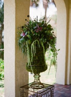 add more color beautiful arrangement with fiddlehead fern in a wire and moss garden urn. great spring and summer look! Wedding Arrangements, Floral Arrangements, Fall Containers, Garden Urns, Amazing Gardens, Garden Inspiration, Plant Hanger, Container Gardening, Vases