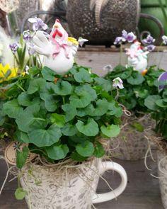 Både söt kopp, blomma och höna! #lillahultsblommor #gjordmedkärlek #hultagrupper