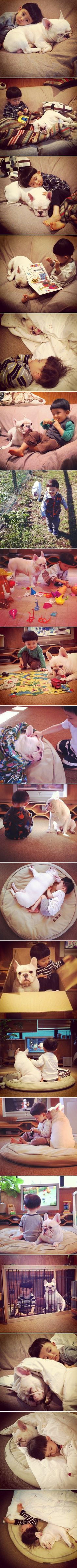 Dečkić i njegov voljeni psić najslađi su par na svijetu