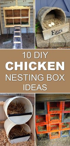 Chicken Coop - Give your chickens a safe, comfortable place to lay eggs with homemade nesting boxes. (Chicken Houses) Building a chicken coop does not have to be tricky nor does it have to set you back a ton of scratch.