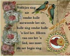 Voeltjies sing nie .....