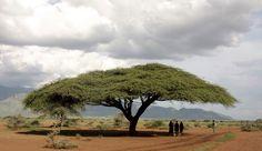 Karamoja - On the way to Moroto - Uganda | © Retlaw Snellac Photograpy