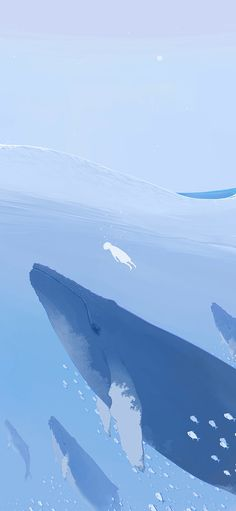 Whale, illustration, ocean, blue Wallpapers for iPhone11, iPhone11 Pro, iPhone 11 Pro Max - Free Wallpaper | Download Free Wallpapers