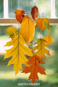 When dipped in wax, colorful leaves can be preserved through this season and beyond. We clustered a group to hang in a window with strands of monofilament to help keep them from falling a second time. Follow our preserved fall leaf tutorial for this hanging decoration. #marthastewart #crafts #diyideas #easycrafts #tutorials #hobby Autumn Leaves Craft, Autumn Crafts, Autumn Art, Leaf Projects, Leaf Crafts, Autumn Activities, Leaf Art, Fall Diy, Fall Decor