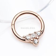 Rose Gold Eres Sparkles Seamless Clicker Hoop Ring-Clear Rose Gold Jewelry, Body Jewelry, Jewellery, Ear Piercings Cartilage, Septum Ring, Jewelers Near Me, Belly Rings, Rose Gold Plates, Pendant Jewelry