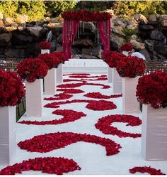 Red and white wedding ceremony - Beach Wedding - Red Dress Wedding Ceremony Ideas, Diy Wedding, Dream Wedding, Red Wedding Decorations, Ceremony Decorations, Wedding Centerpieces, Wedding Themes Red, Black Red Wedding, Red And White Weddings