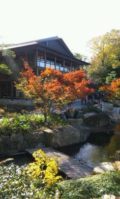 Tokugawa-en #japan #Nagoya