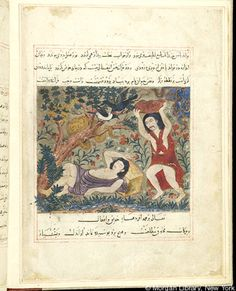Bestiary - Medieval & Renaissance Manuscripts Online - The Morgan Library & Museum Cain And Abel, Vintage Romance, Religious Art, Islamic Art, Art And Architecture, Schools, Persian, Renaissance, Book Art