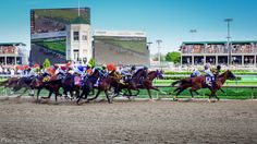 Though I almost hate to mention this, since it is the primary reason we achieve tourism yearly, it is the oldest, consistently running horse race in the United States. It is no secret that people travel around the world just to see a race that lasts under 30 seconds…and of course drink bourbon.