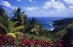 Happy Monday ~ #Dominica featured in the UK Daily Mail by Penny Meyrick via @Nature_Island