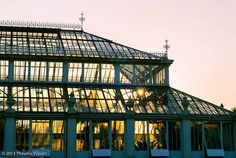 Temperate House Blondie Concert, Orchid House, Kew Gardens, Louvre, London, Building, Travel, Design, Viajes