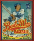 Barbed Wire Baseball by Marissa Moss -- Prairie Pasque 2015-16 Nominee