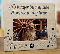 Pet Memorial Ceramic Picture Frame       >>> Great deal    http://amzn.to/2bNdUV8