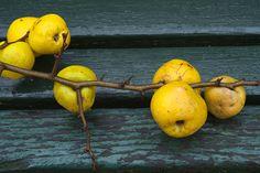 Fruit, Preserves, A Food, Preserve, Preserving Food, Butter, Pickling