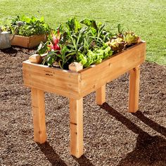 Farmer D Cedar Bed-on-legs Kit, 2' X 4'