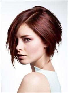 Gut aussehend Bilder Kurze Bob Frisuren 2015 Leicht Bob Frisuren ... #Frisuren2018 #HairStyles #bobfrisuren2018 #ModerneFrisuren #frisuren2018frauen #kurzhaarfrisuren2018 #frisurenmänner2018 #frisuren2018frauen #Manner Frisuren2018Wenn Sie möchten, um zu versuchen kurze Haarschnitt, eines dieser besten Beispiele zum Besten von Sie ist bob Haarschnitte! Und heute nachher sich ...
