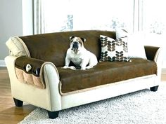 Best Couch Fabric For Dogs. This awesome photo selections about Best Couch Fabric For Dogs is available to save. Small Sectional Couch, Leather Couch Sectional, Cool Couches, Sofa Couch, Couch Set, Couch Furniture, Faux Leather Couch, Black Leather Sofas, Contemporary Sofa