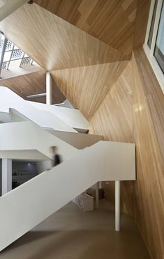 Cocoon / Mochen Architects & Engineers