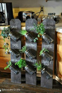 Even in winter we can still grow fresh herbs. In most regions the herb garden is now dormant, but with a little planning you can grow many culinary herbs indoors this winter. An indoor herb garden is not only functional, it can be attractive and provide Mason Jar Herbs, Mason Jar Herb Garden, Pot Mason Diy, Herb Garden Pallet, Herb Garden In Kitchen, Diy Herb Garden, Herb Garden Design, Kitchen Herbs, Mason Jar Crafts