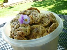 Urban Legend Chocolate Chip Cookies - Allrecipes