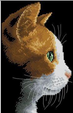 Fotografia na stene spoločenstva – fotografií 123 Cross Stitch, Funny Cross Stitch Patterns, Cat Cross Stitches, Cross Stitch Books, Beaded Cross Stitch, Crochet Cross, Cross Stitch Animals, Cross Stitch Designs, Cross Stitching