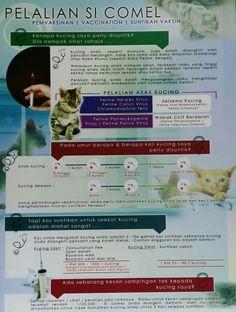 Orijen Cat Kitten  Kg Preisvergleich