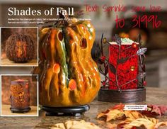 Text: Sprinkle some love to 31996.  Pink Zebra Fall/Autumn Shades. Fall leaves bling, autumn gourd, natural twig pumpkin, metal pumpkin with leaf medallions. https://pinkzebrahome.com/trishcain