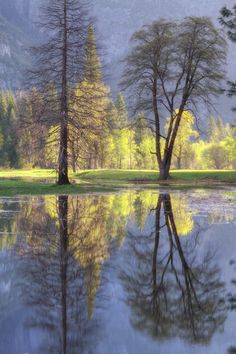 scenery, landscapes, nature, forests, trees, water, Valley Reflections - Yosemite National Park