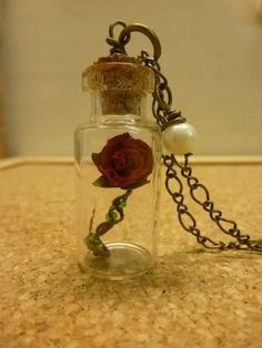 Beauty and the Beast necklace :O so awesome!