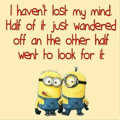 Stupid minions Funny Minion Pictures, Funny Minion Memes, Funny Disney Jokes, Some Funny Jokes, Memes Humor, Really Funny Memes, Jokes Quotes, Funny Relatable Memes, Funny Facts