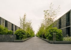 "David Chipperfield creates ""village"" of stone dwellings / Landscape architect: Belt & Collins  Photography: Simon Menges"